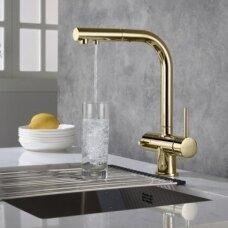 Virtuvinis maišytuvas Blue Water APALA su dušu ir su jungtimi filtrui aukso spalvos